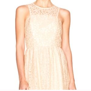 Gorgeous cream lace spring dress size 6